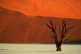 Bild: Namibia – Leben in extremer Landschaft