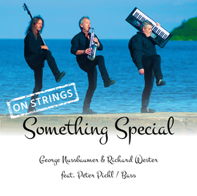 Bild: Georg Nussbaumer & Richard Wester - Something Special on strings
