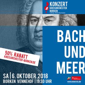 Bild: Bach und Meer
