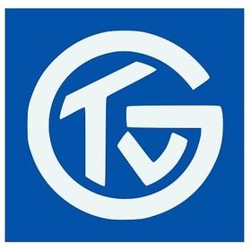 HSG Nordhorn-Lingen - TV Großwallstadt