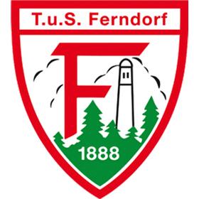 TV Emsdetten - TuS Ferndorf