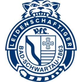TV Emsdetten - VfL Bad Schwartau