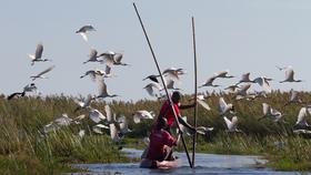 Bild: Matthias Gößmann: Augenblick - Zambia