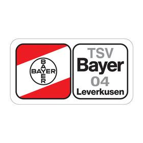 Bild: HSG Blomberg-Lippe - TSV Bayer Leverkusen 04