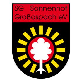 SV Wehen Wiesbaden - SG Sonnenhof Großaspach