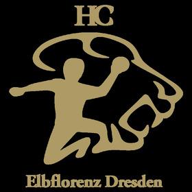 Bild: DJK Rimpar Wölfe - HC Elbflorenz Dresden 2006