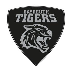 Bild: Ravensburg Towerstars - Bayreuth Tigers