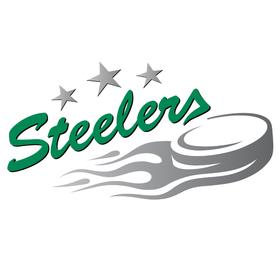 Bild: Ravensburg Towerstars - Bietigheim Steelers