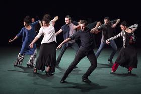 Flamencos en route: Mosaico