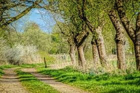 Bild: Spaziergang für Fotografie-Begeisterte - mit Rüdiger Cornels