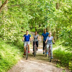 Bild: Radeln in alle Himmelsrichtungen – geführte Radtour