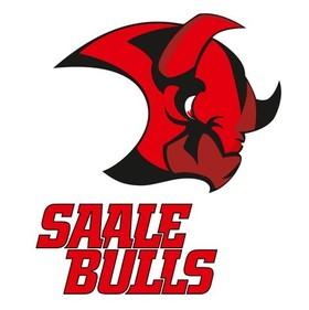 Bild: Wohnbau Moskitos Essen - Halle Saale Bulls