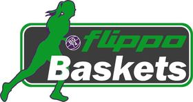 Rutronik Stars Keltern - flippo Baskets BG 74 Göttingen