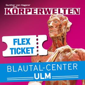 Bild: KÖRPERWELTEN - Flex Ticket - Eine HERZenssache in Ulm - Flex-Ticket