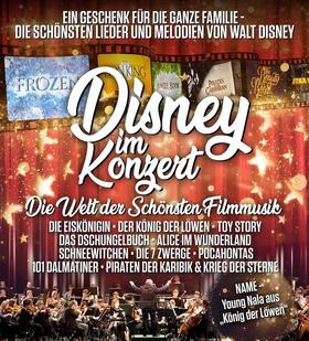 Bild: A Tribute to Disney im Konzert