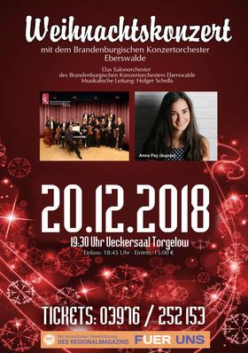 Bild: Brandenburgisches Konzertorchester