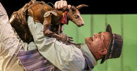 Bild: Die Känguru-Chroniken - Societaetstheater