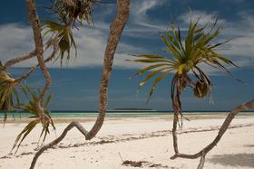 Bild: Steffen Ramer: Reif für die Insel - Multi-Reise-Vision