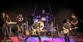 Bild: Bosstime - Bruce Springsteen Tribute Band