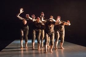 """Balletto di Teatro di Torino / Ivgi&Greben (I/NL/IL) """"Document"""""""