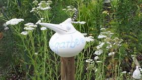 Gartenseminar - Kräuter – einfach schön