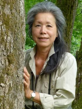 Bild: Eintauchen in den Wald