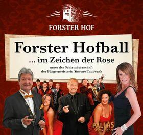 Bild: Forster Hofball