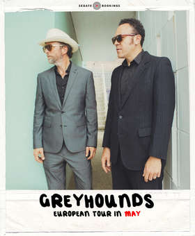 Bild: Greyhounds