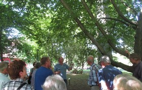 Bild: Spaziergang durch die Plantage