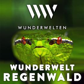WunderWelten: Regenwald