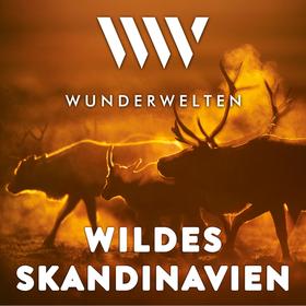 WunderWelten: Wildes Skandinavien
