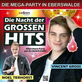 Bild: Die Nacht der großen Hits - Vincent Gross & Noel Terhorst