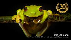 20.Norddeutsche Naturfototage - präsentiert von AC Foto