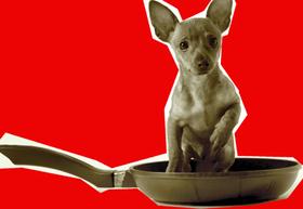 Bild: Jacqueline Amirfallah & Comedy Company: Schmeckt´s? - Die Impro-Kochshow