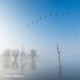 """Multivisionsshows Umweltfotofestival »horizonte zingst« 2019 - GDT Regionalgruppe Mecklenburg-Vorpommern – """"Wasser, Licht & Weite"""""""
