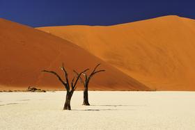 Namibia, Botswana - Wildnis Afrika
