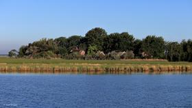 Vogelschutzinsel Kirr hautnah erleben - Vogelschutzinsel Kirr hautnah erleben