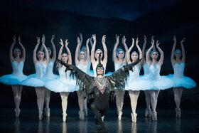 Bild: Schwanensee mit Orchester - Ein Ballettklassiker für die ganze Familie