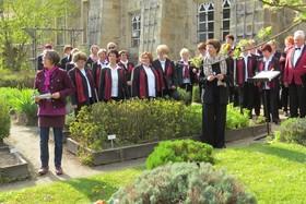 Bild: Frühlingssingen - Wandeln und Singen am 1. Mai