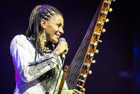 Bild: African Music Festival