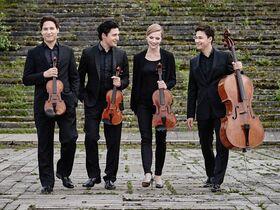 Bild: Schumann Quartett