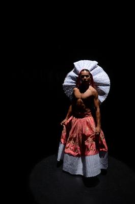 Bild: Requiem for an Alcaravan