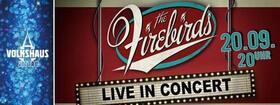 Bild: Firebirds Live im Concert