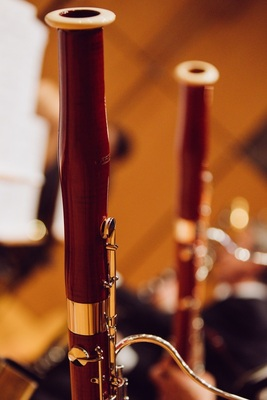 Bild: 2. Sinfoniekonzert