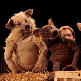 Bild: Theater Urknall - Drei Schweine