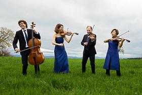 Bild: Mozart-Streichquartettfestival