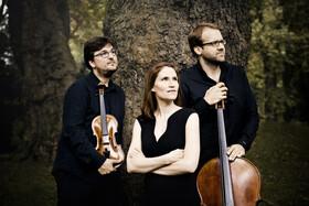 Bild: Morgenstern Trio - Klaviertrios von Beethoven, Thomas Blomenkamp & Brahms
