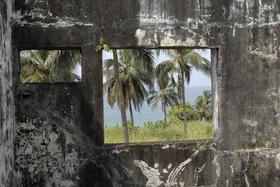 Die Büchse der Pandora - Guinea, Liberia, Sierra Leone