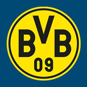 Neckarsulmer Sport-Union - Borussia Dortmund