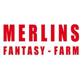 Merlins Fantasy Farm - Oldies West Coast Rock